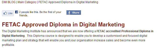 Digital Marketing Institute FETAC